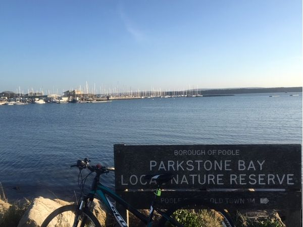 A beautiful cycle home through Whitecliff in Poole